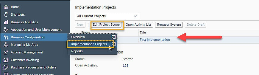 SAP Business ByDesign Implementation Projects