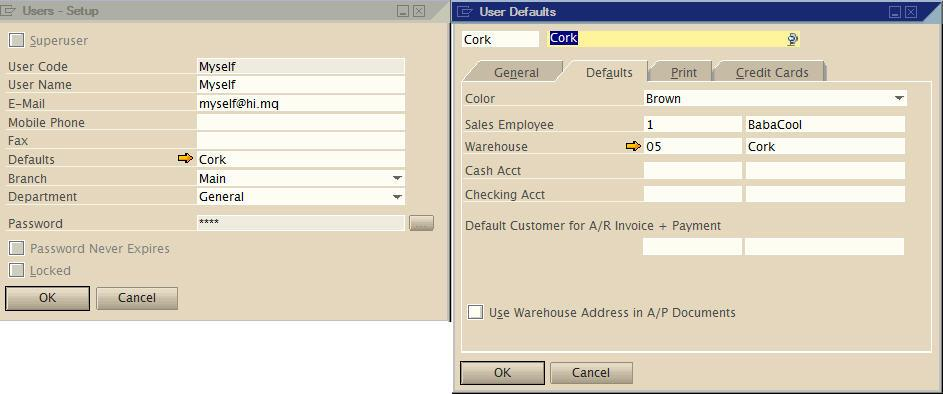 warehouse location - sap business one