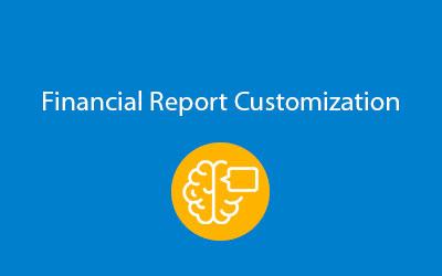 SAP Business One Financial Report Customization