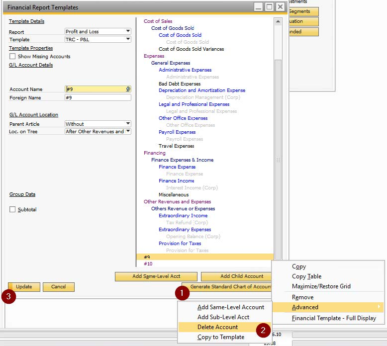 Financial report template - sap business one