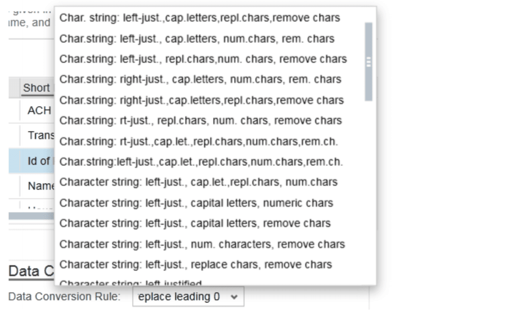 SAP ByDesign Character string
