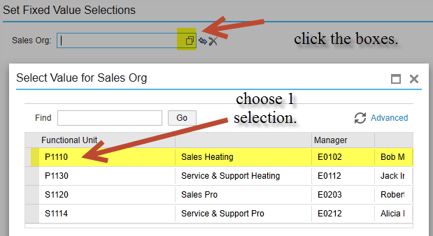 set fixed value selections sap business bydesign