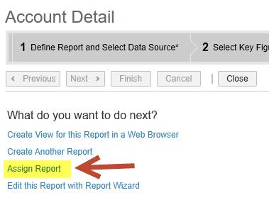 assign report sap business bydesign